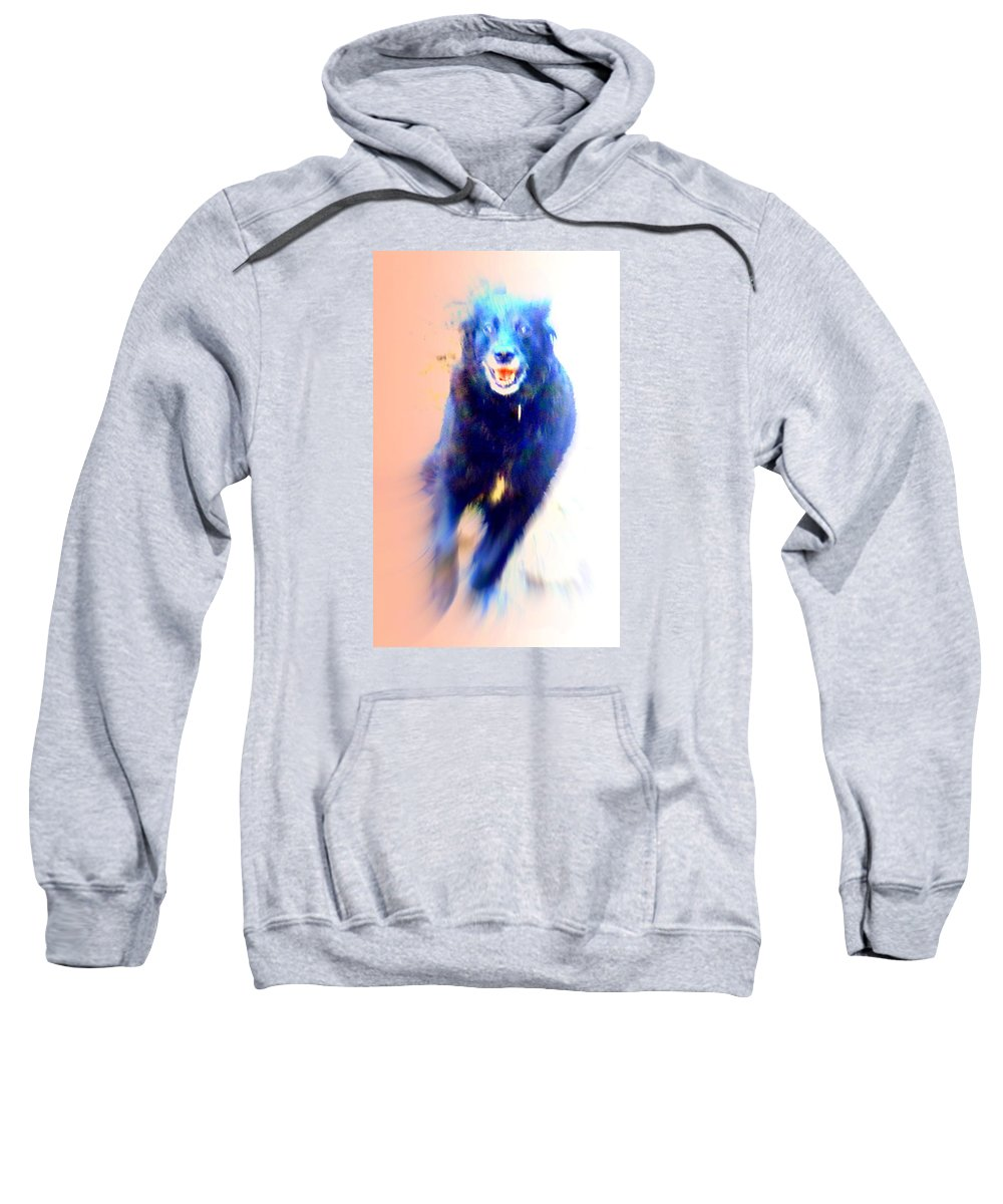 Dog Sweatshirt featuring the photograph There Are Wild Dogs Living In The Mountains by Hilde Widerberg