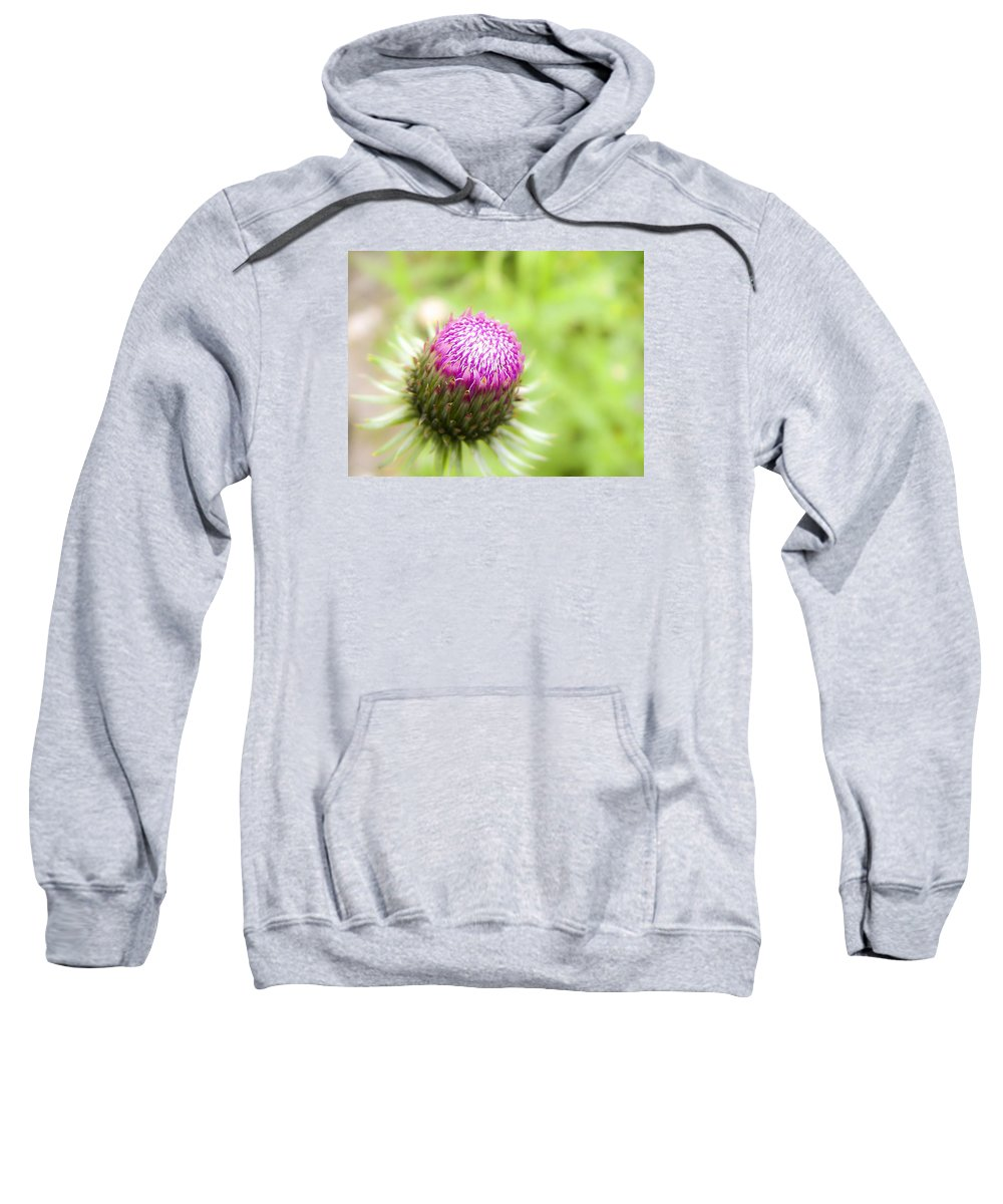 Forest Sweatshirt featuring the photograph Thistle by Irina Effa