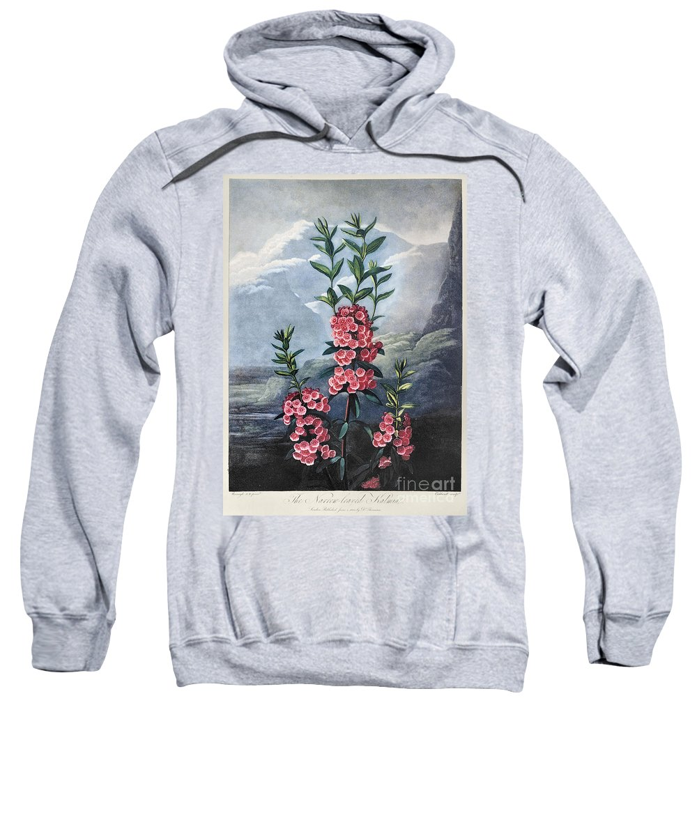 1804 Sweatshirt featuring the photograph Thornton: Kalmia by Granger