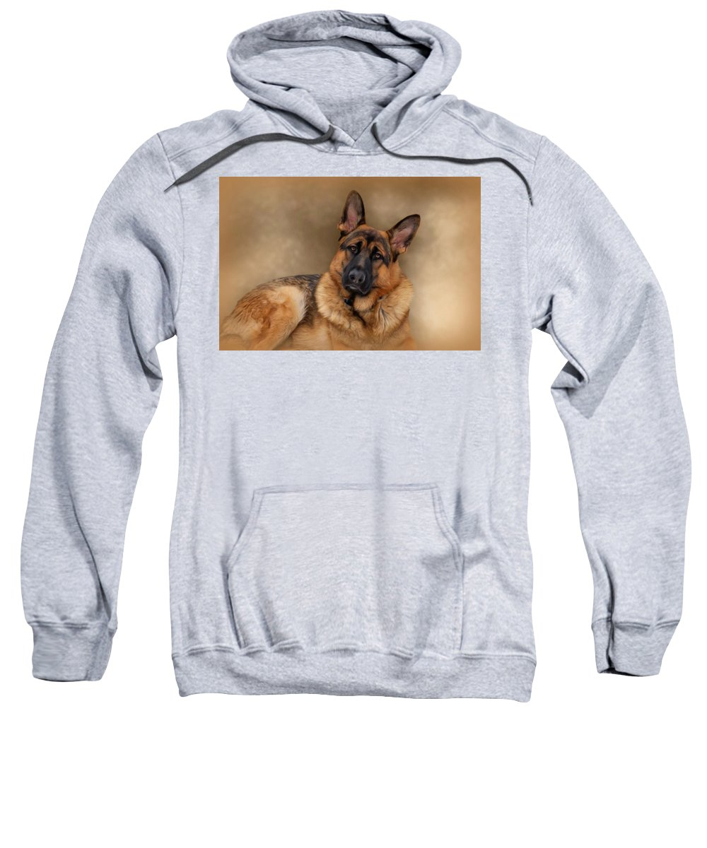 Dogs Sweatshirt featuring the photograph Those Eyes by Sandy Keeton