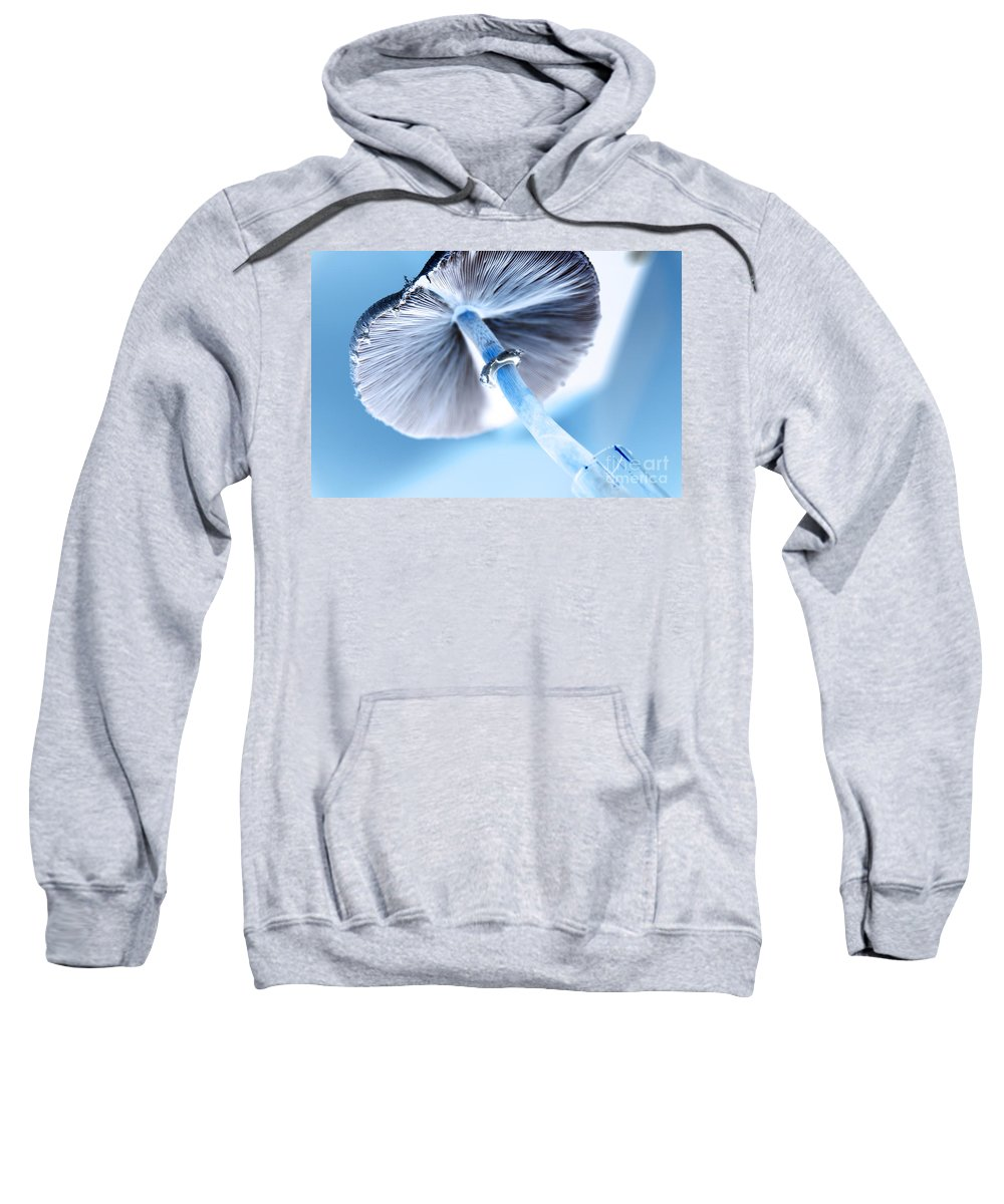 abstract Art Sweatshirt featuring the photograph Tilt A Whirl by Amanda Barcon