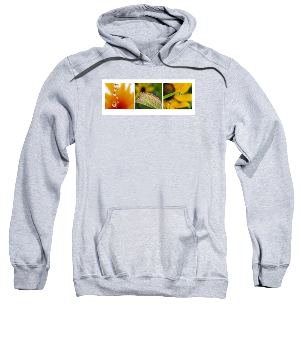 Dew Sweatshirt featuring the photograph Tiny Miracles by Linda Murphy