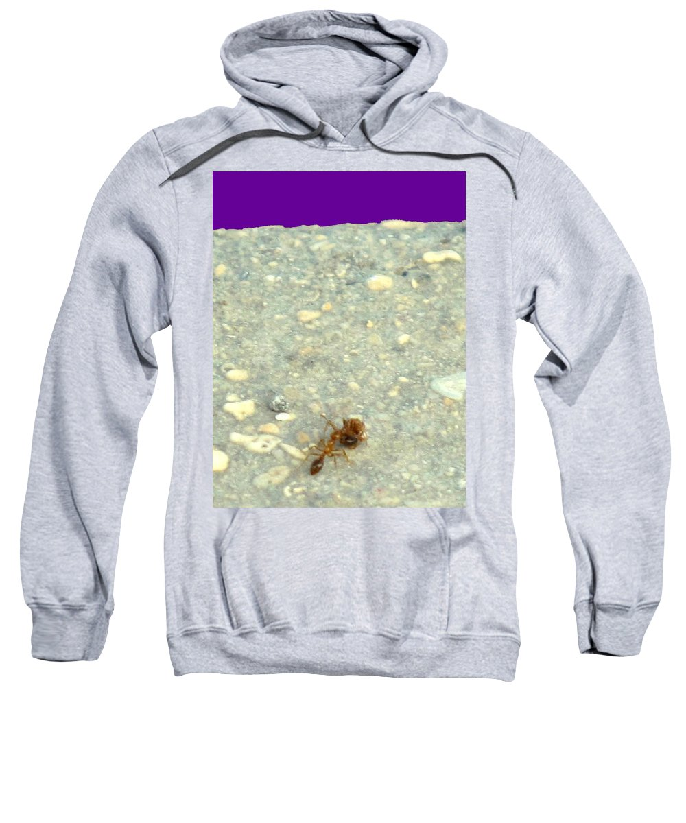 Ant Sweatshirt featuring the photograph To The Edge by Ian MacDonald