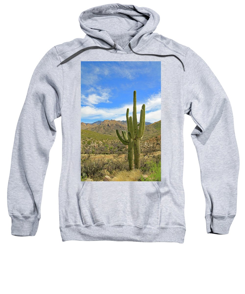 Sweatshirt featuring the photograph Together by Kevin Mcenerney
