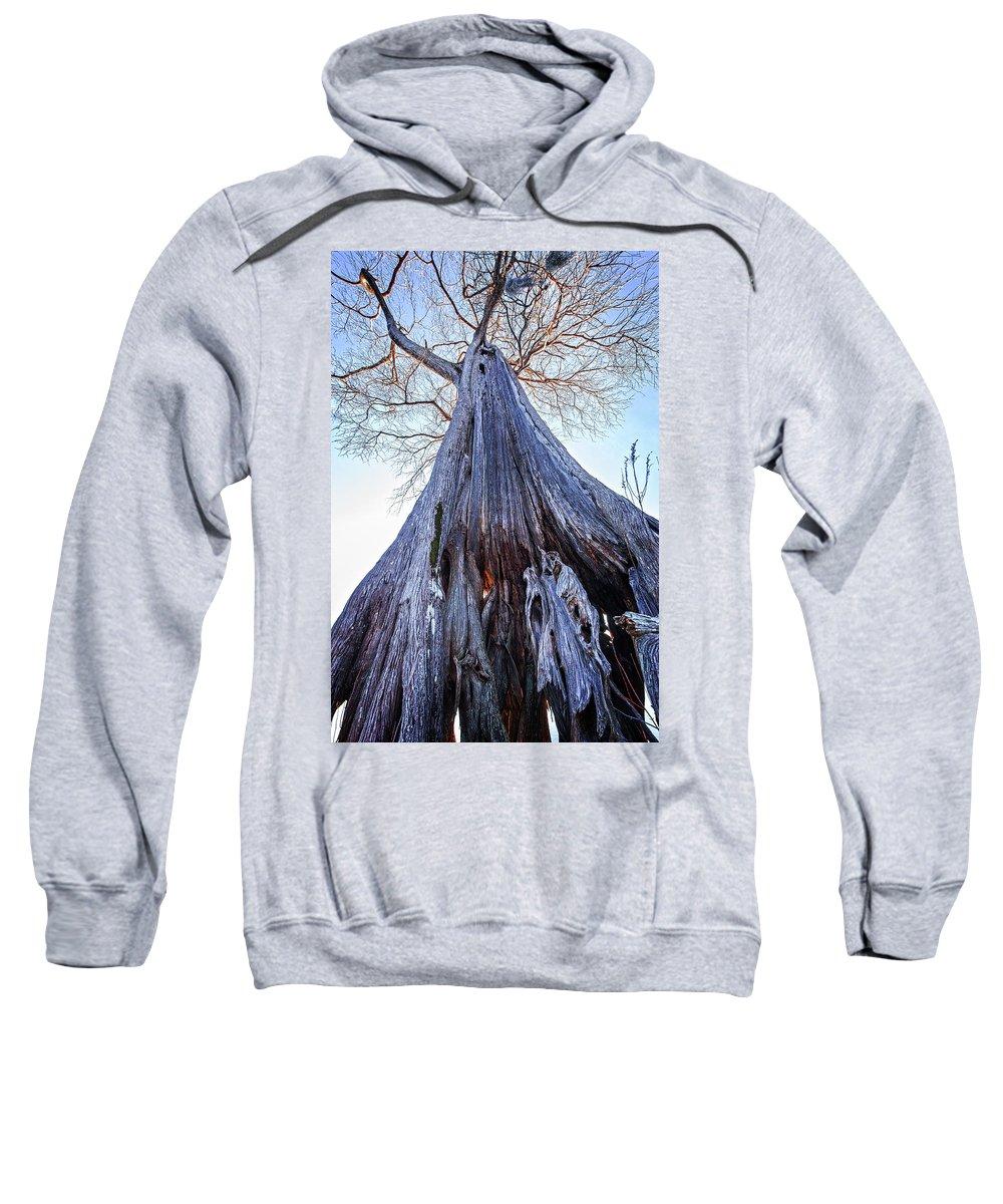 Cypress Sweatshirt featuring the photograph Towering Survivor by Alan Raasch