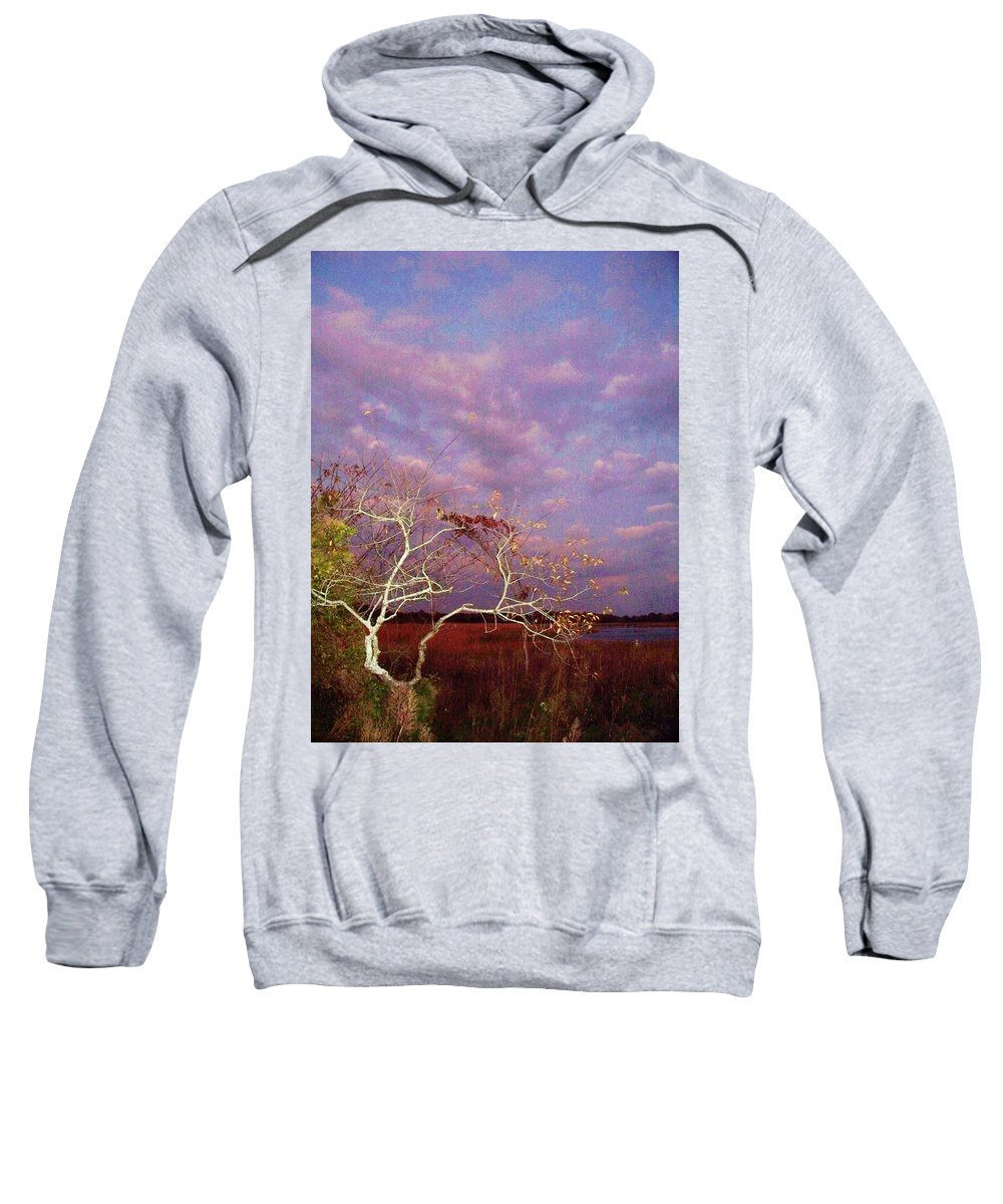 Trees Sweatshirt featuring the painting Tree And Sky At Cape May Point State Park Nj by Eric Schiabor
