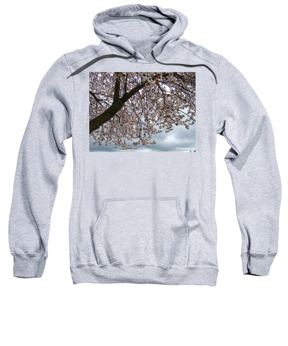 �blossoms Artwork� Sweatshirt featuring the photograph Tree Blossoms Landscape 11 Spring Blossoms Art Prints Giclee Sky Storm Clouds by Baslee Troutman