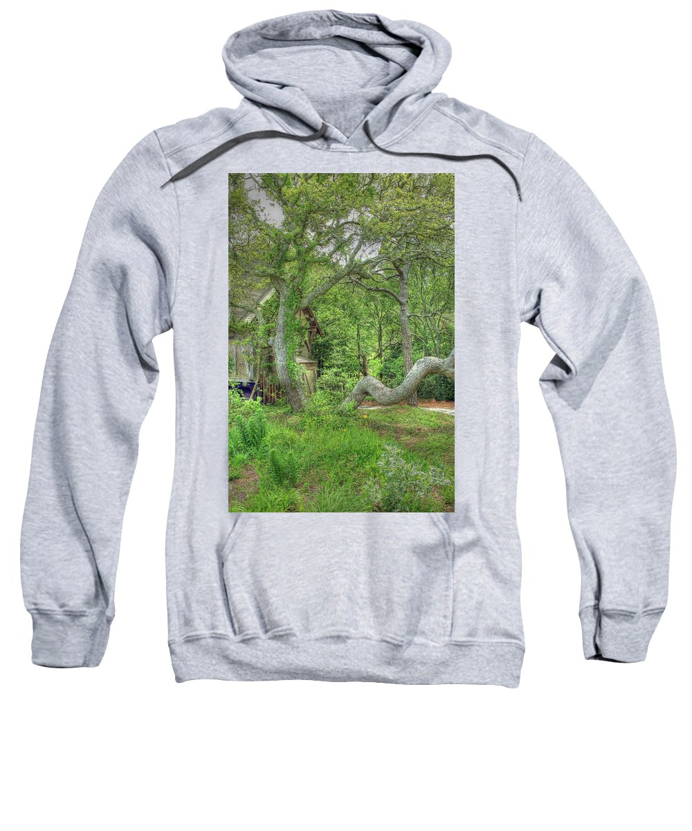 Scenic Sweatshirt featuring the photograph Tree Curves Two by Douglas Settle