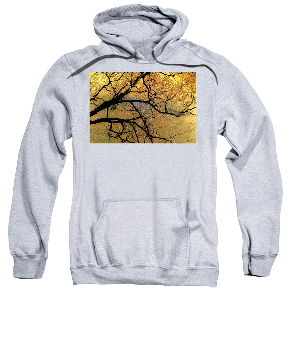 Scenic Sweatshirt featuring the photograph Tree Fantasy 7 by Lee Santa