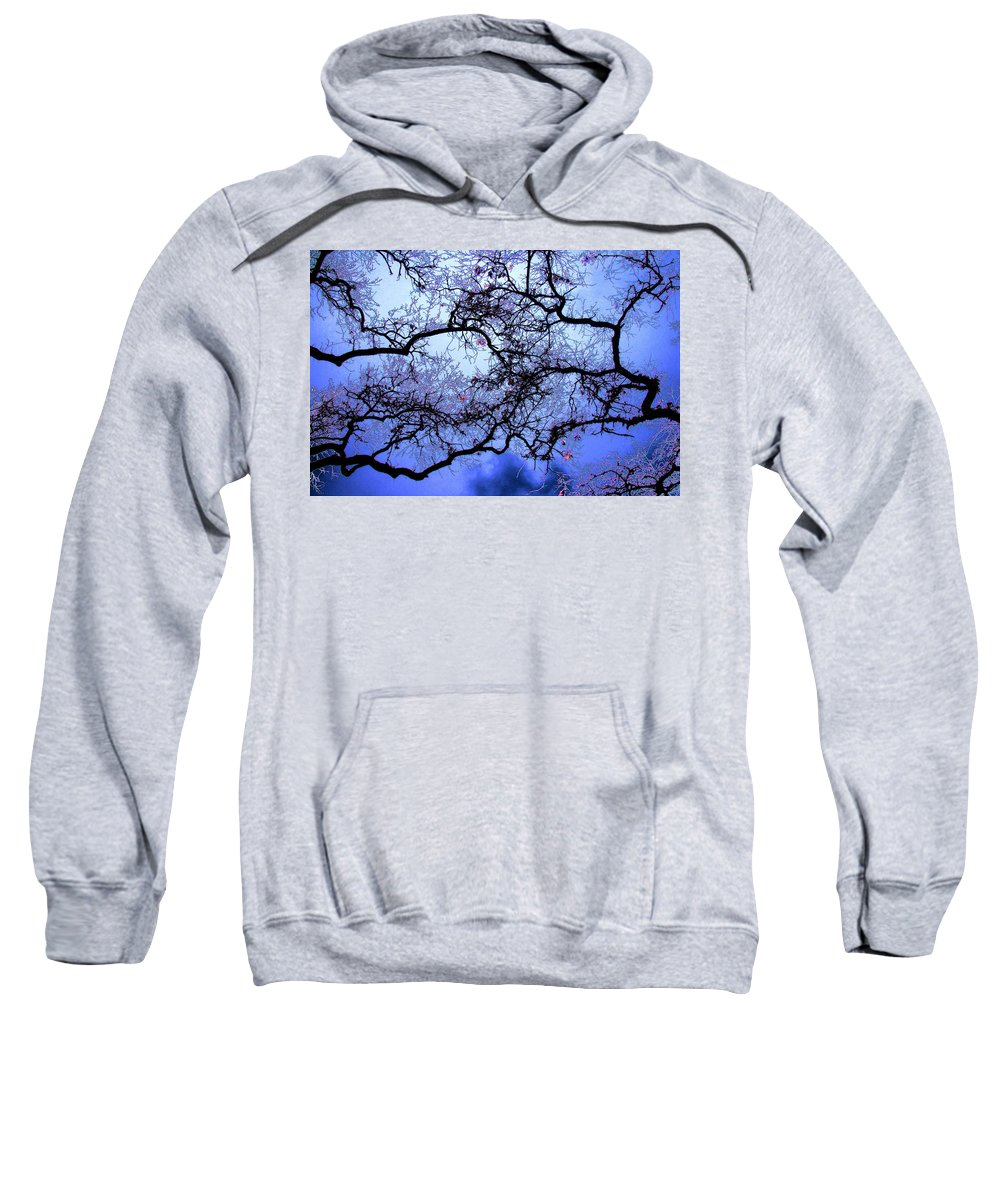 Scenic Sweatshirt featuring the photograph Tree Fantasy In Blue by Lee Santa