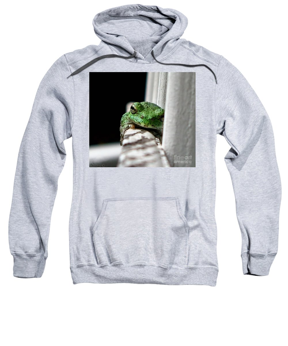 Tree Frog Sweatshirt featuring the photograph Tree Frog by September Stone