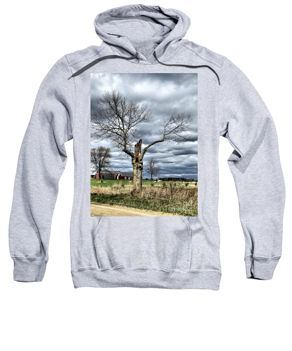 Tree Sweatshirt featuring the photograph Tree Man by September Stone