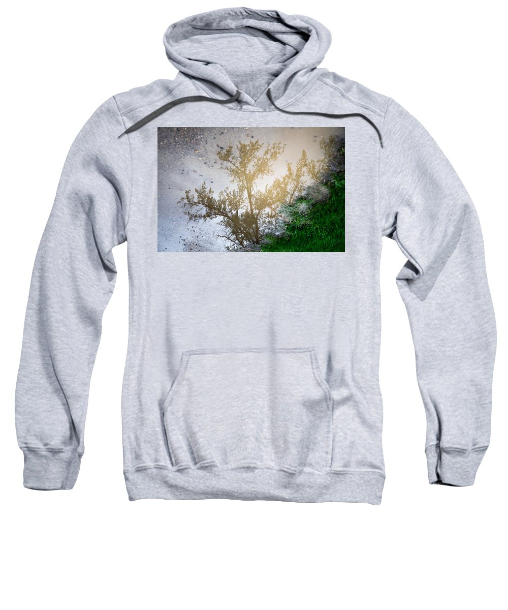 Tree Sweatshirt featuring the photograph Tree Reflection Upside Down 1 by Chad Rowe