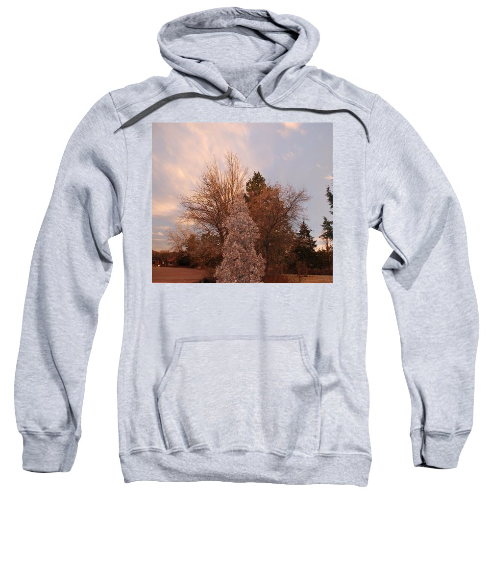 Trees Sweatshirt featuring the photograph Trees At The State Capital by Rob Hans