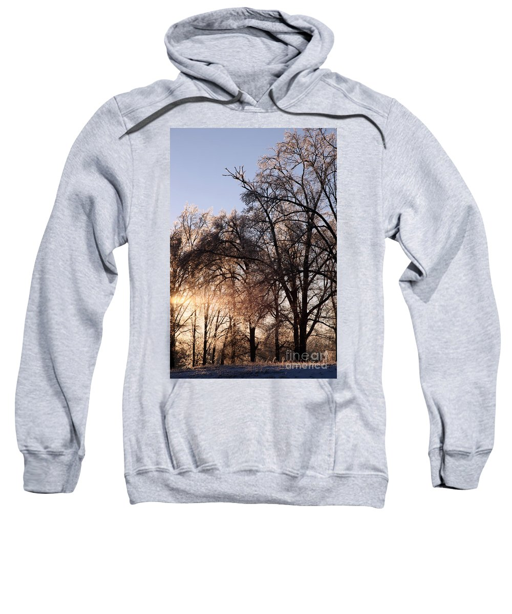Trees Sweatshirt featuring the photograph Trees In Ice Series by Amanda Barcon