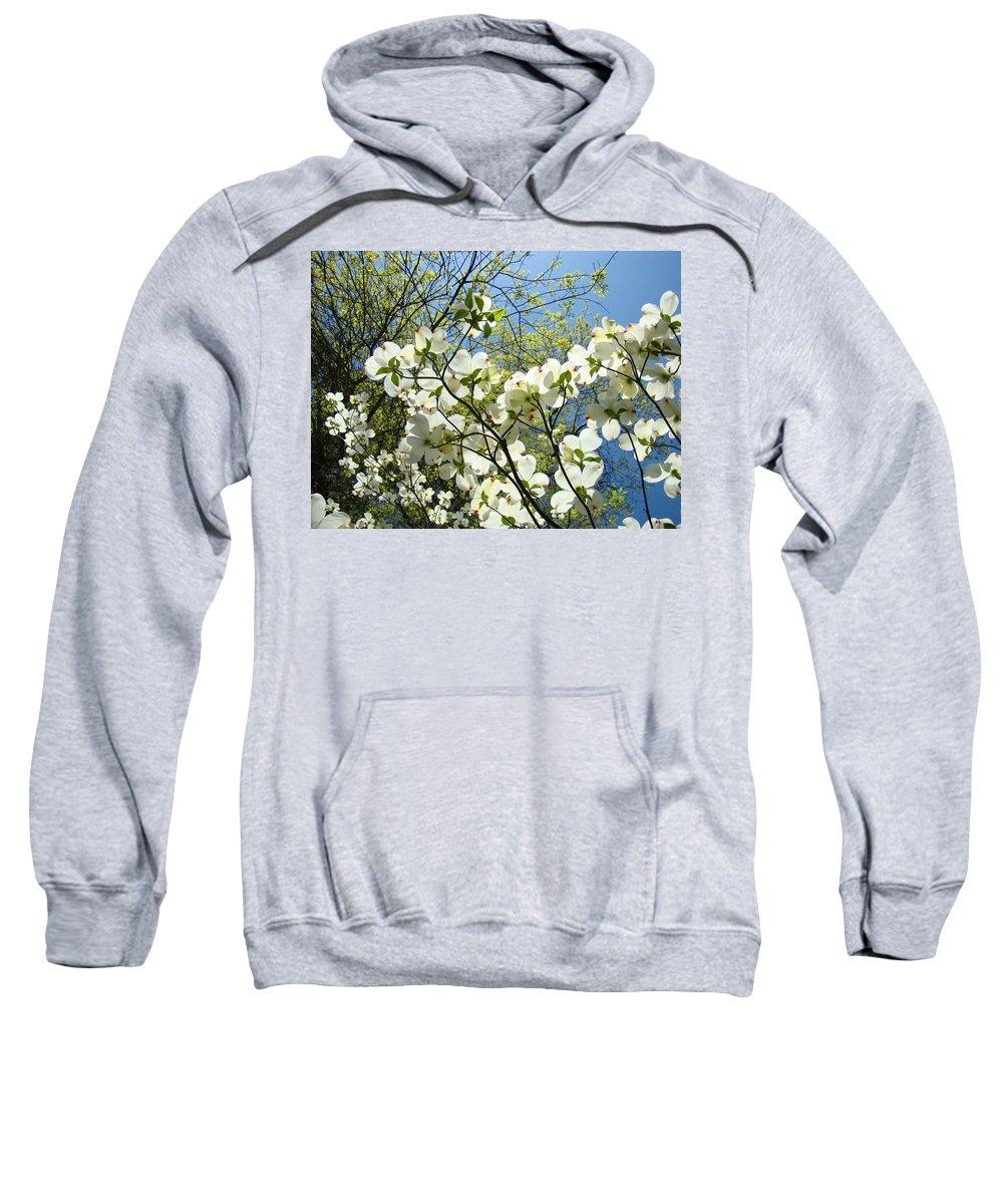 Dogwood Sweatshirt featuring the photograph Trees Sunlit White Dogwood Art Print Botanical Baslee Troutman by Baslee Troutman