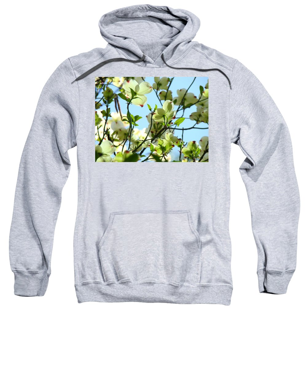 Dogwood Sweatshirt featuring the photograph Trees White Dogwood Flowers 9 Blue Sky Landscape Art Prints by Baslee Troutman