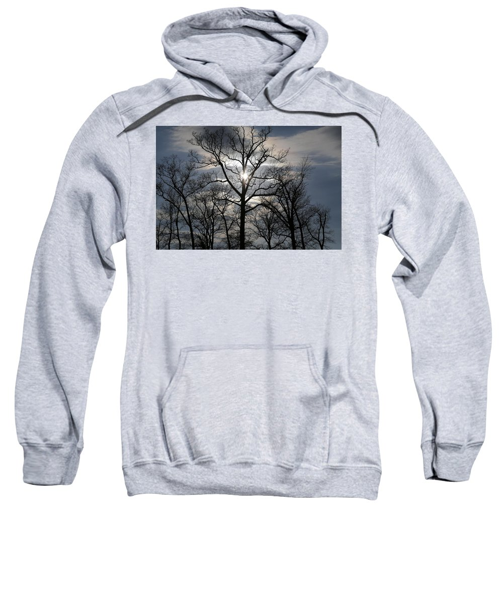 Digital Sweatshirt featuring the photograph Treetop by Jeff Roney