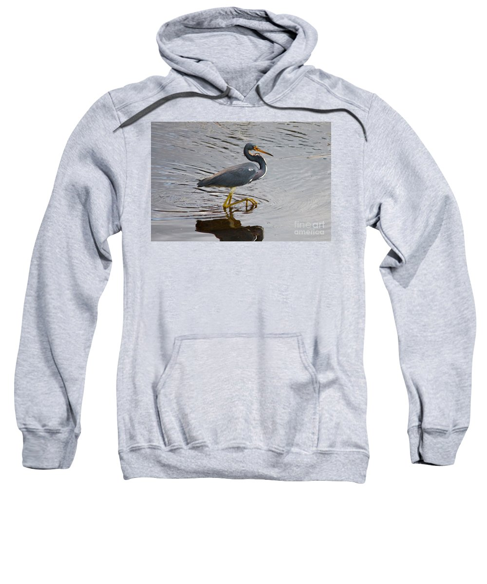 Bird Sweatshirt featuring the photograph Tri-colored Heron Wading In The Marsh by Carol Groenen