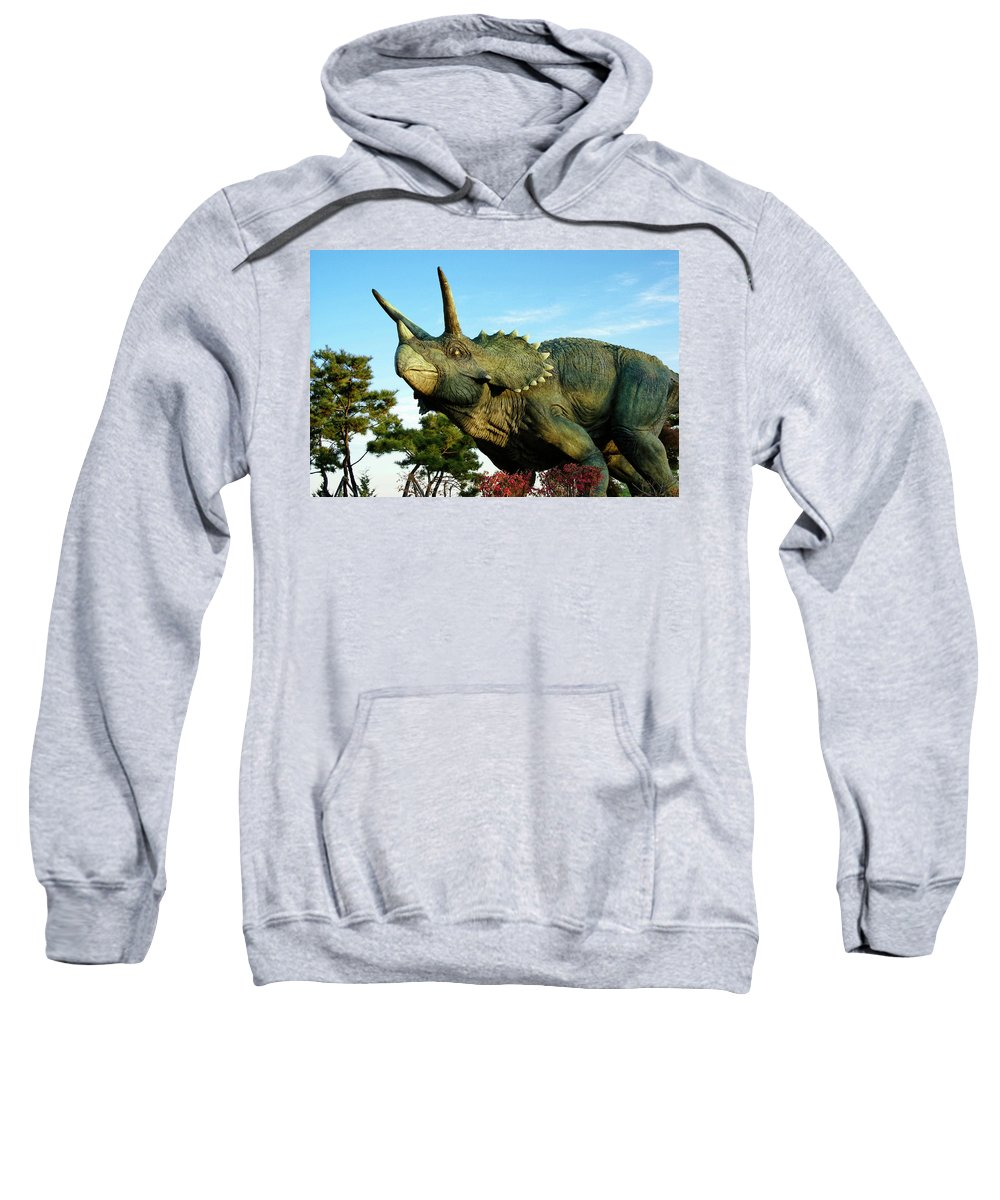 South Korea Sweatshirt featuring the photograph Triceratops by Michele Burgess
