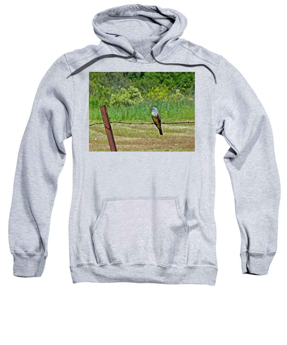 Birds Sweatshirt featuring the photograph Tropical Kingbird by Diana Hatcher