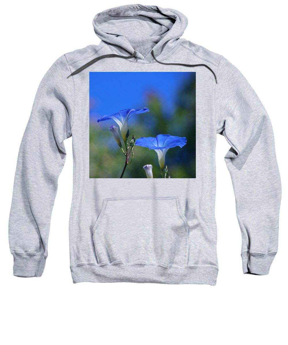 morning Glories Sweatshirt featuring the photograph True Blue by Byron Varvarigos