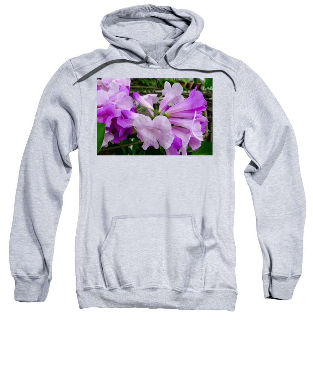 Background Sweatshirt featuring the painting Trumpet Flower 11 by Jeelan Clark