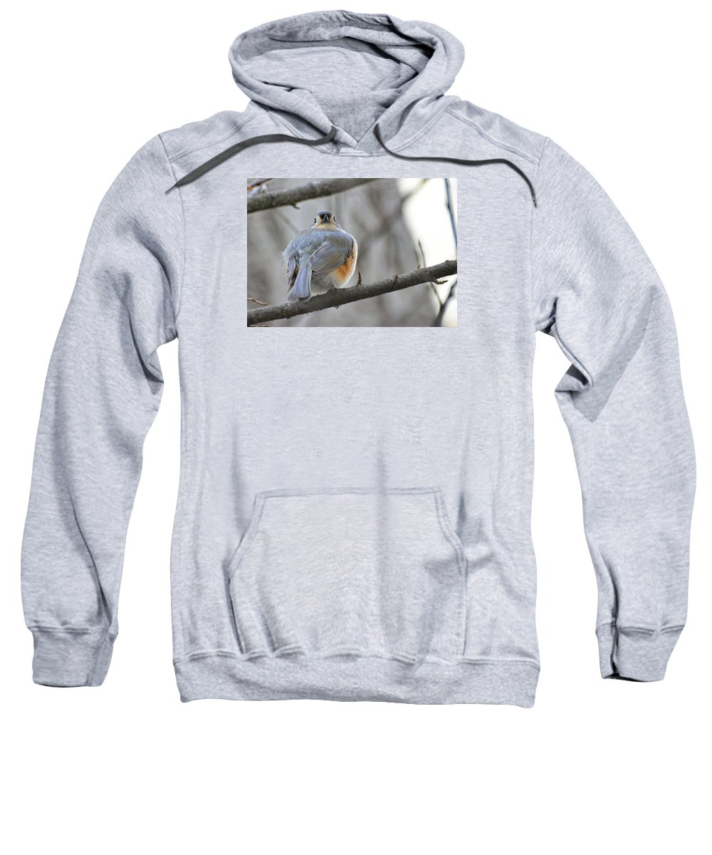 Sweatshirt featuring the photograph Tufted Titmouse 02 by Robert Hayes
