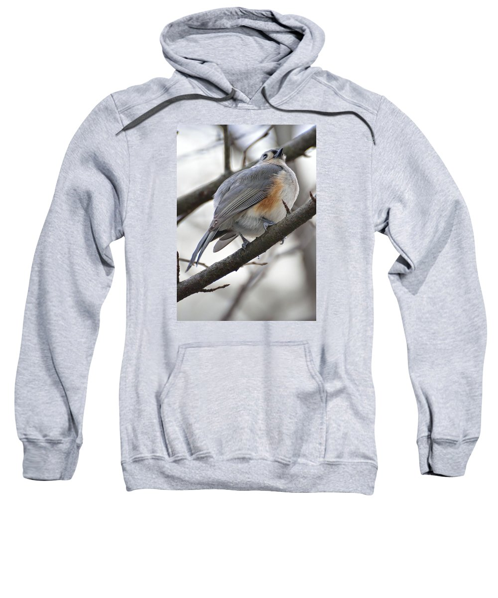 Sweatshirt featuring the photograph Tufted Titmouse 04 by Robert Hayes