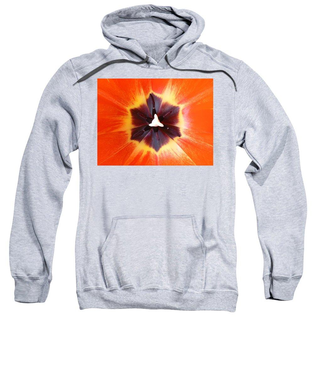 Tulip Sweatshirt featuring the photograph Tulip by Daniel Csoka