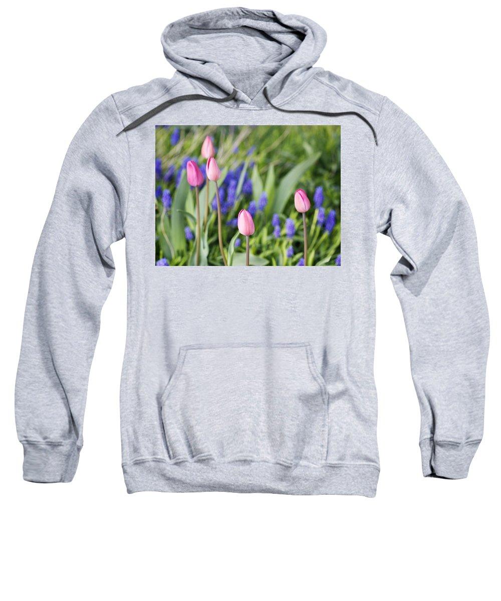 Flower Sweatshirt featuring the photograph Tulip Garden by Marilyn Hunt