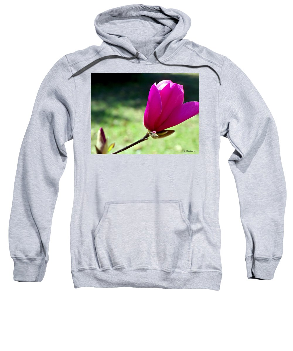 Tulip Sweatshirt featuring the photograph Tulip Tree Blossom by Betty Northcutt
