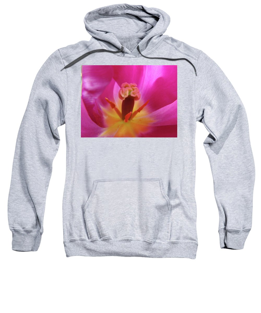 �tulips Artwork� Sweatshirt featuring the photograph Tulips Artwork Pink Purple Tuli Flower Art Prints Spring Garden Nature by Baslee Troutman