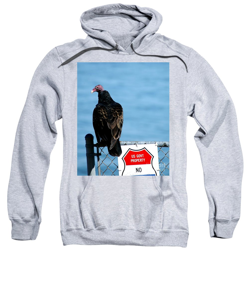 Clay Sweatshirt featuring the photograph Turkey Buzzard by Clayton Bruster