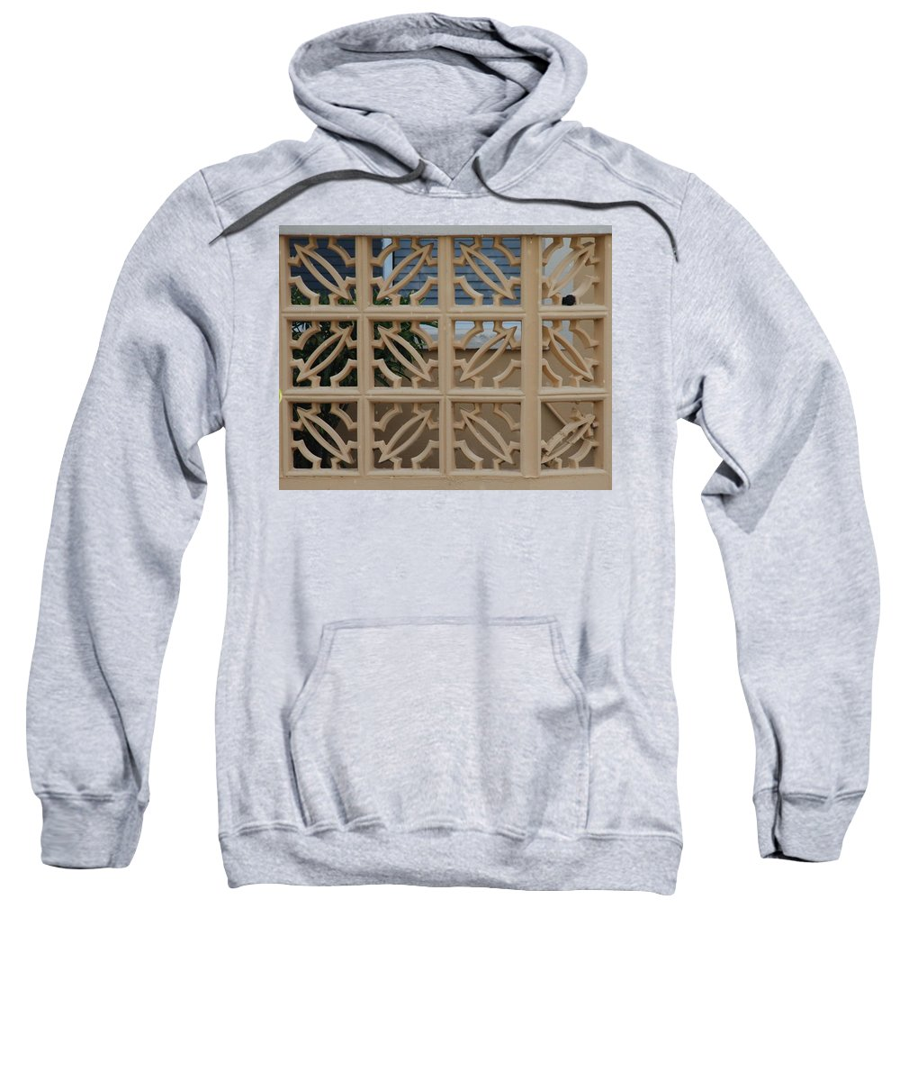 Sculpture Sweatshirt featuring the photograph Turtle Board by Rob Hans