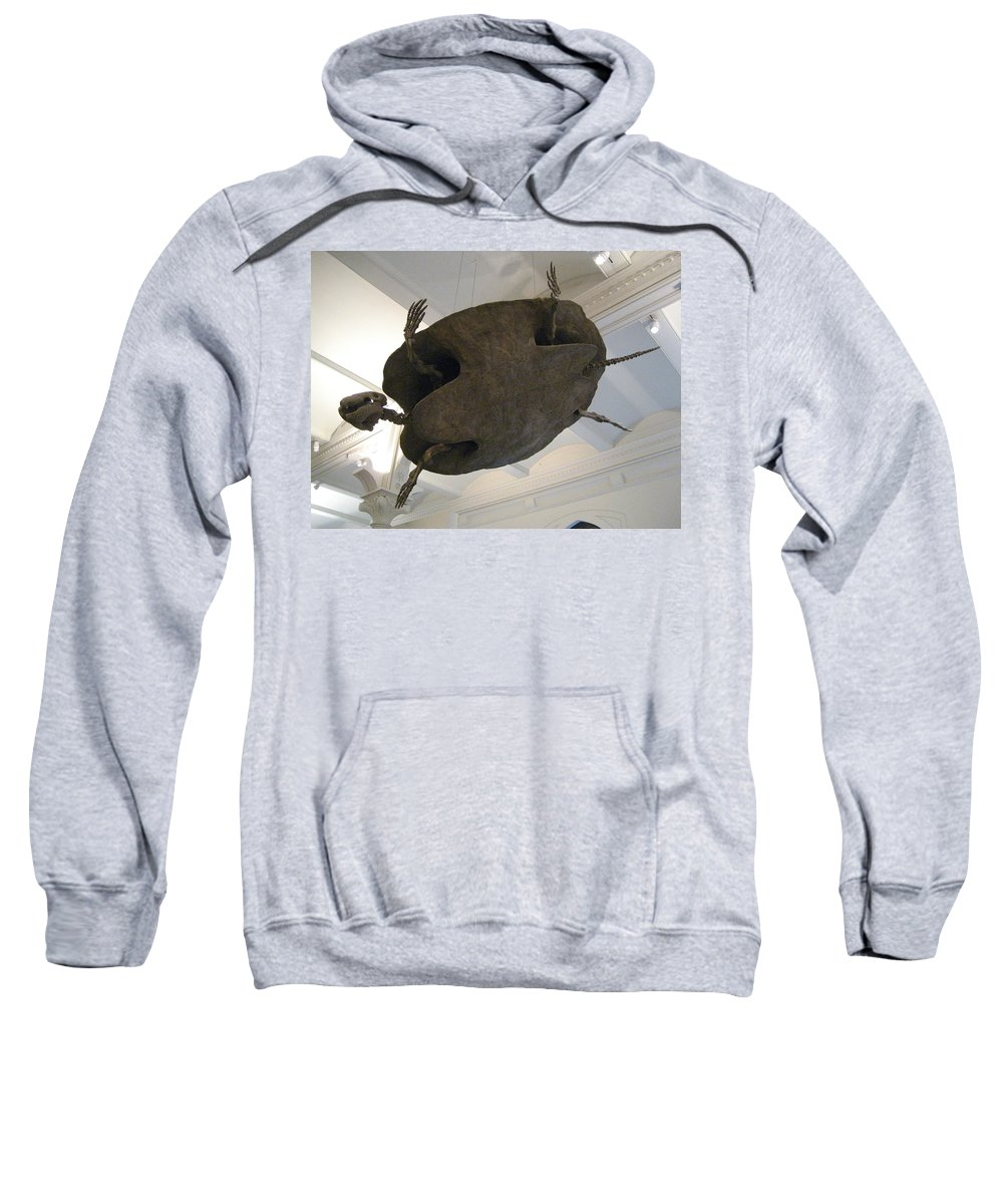 Turtle Sweatshirt featuring the photograph Turtle by Brian McDunn