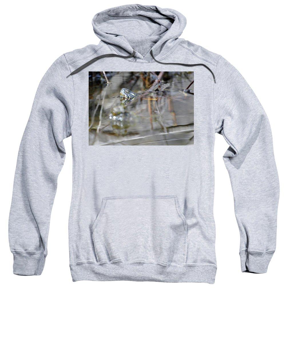 Turtle Sweatshirt featuring the photograph Turtle Eye Reflection by Glenn Gordon