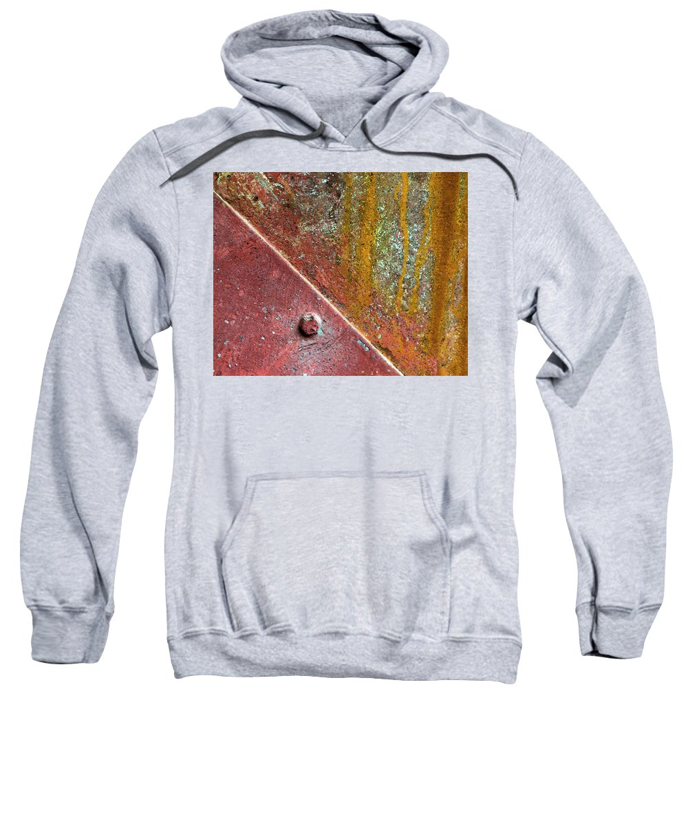 Rust Sweatshirt featuring the photograph Tussled by Dorothy Hilde