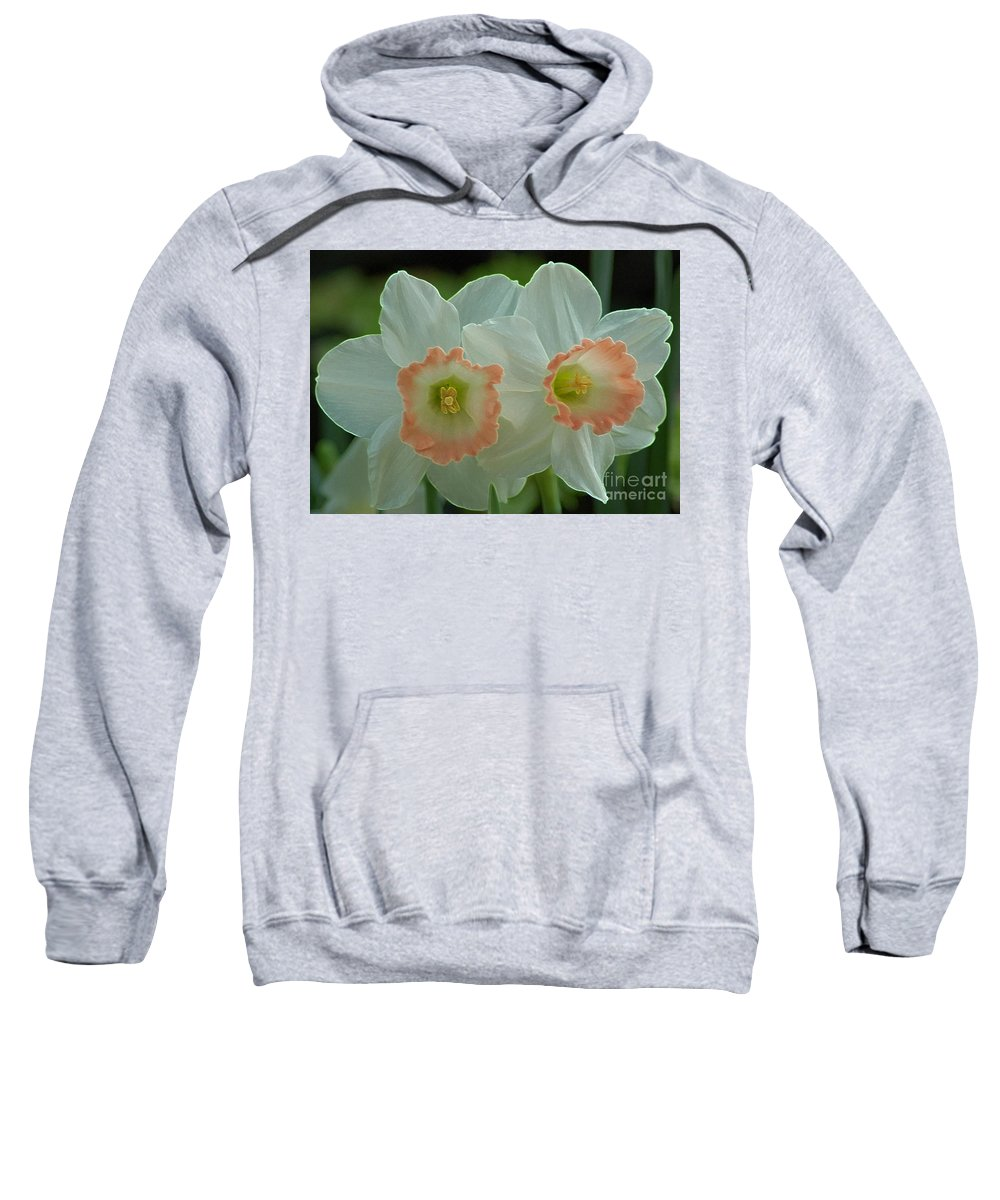 Jonquils Sweatshirt featuring the photograph Twins by Kathleen Struckle