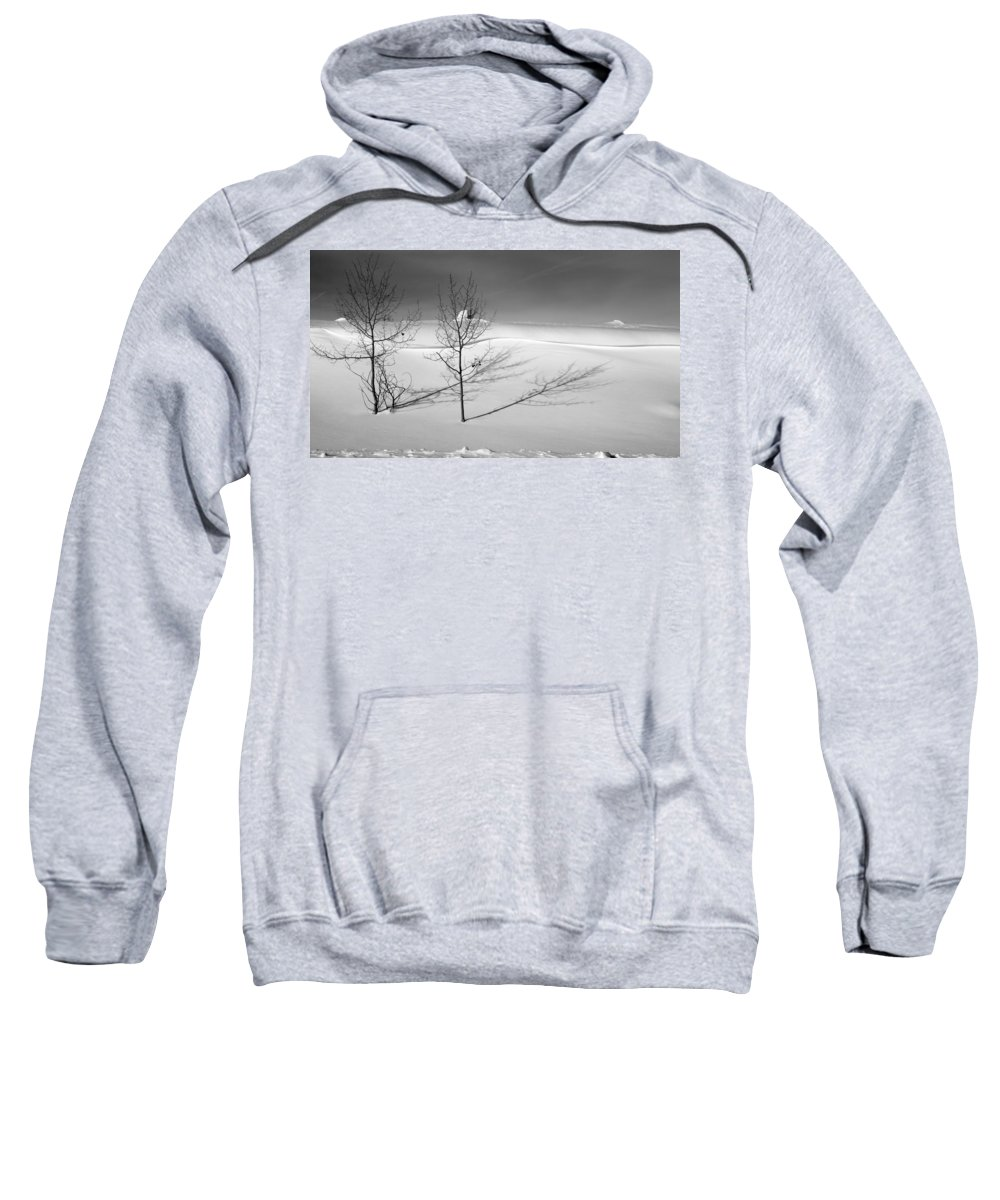 Nature Sweatshirt featuring the photograph Twins by Skip Hunt