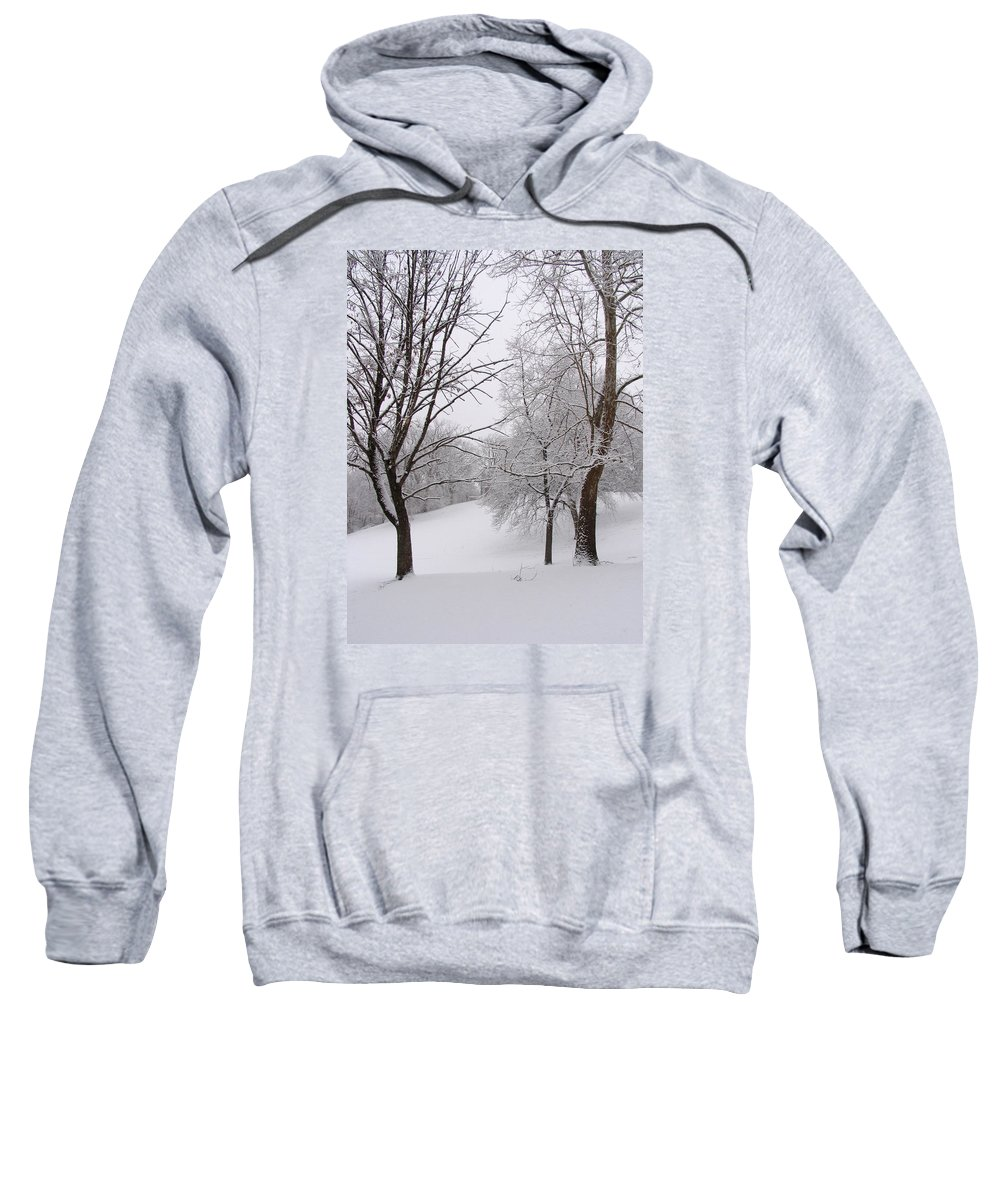 Ice Sweatshirt featuring the photograph Twins Trees In The Snow by Adam Long