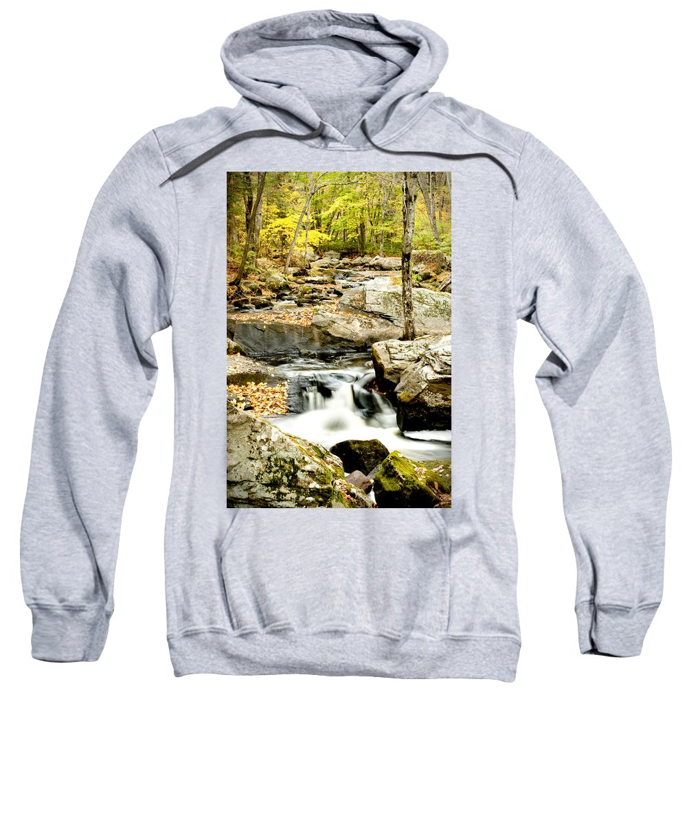 Woods Sweatshirt featuring the photograph Two Falls by Greg Fortier