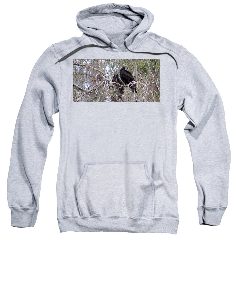 Birds Sweatshirt featuring the photograph Two Friends by Ed Smith
