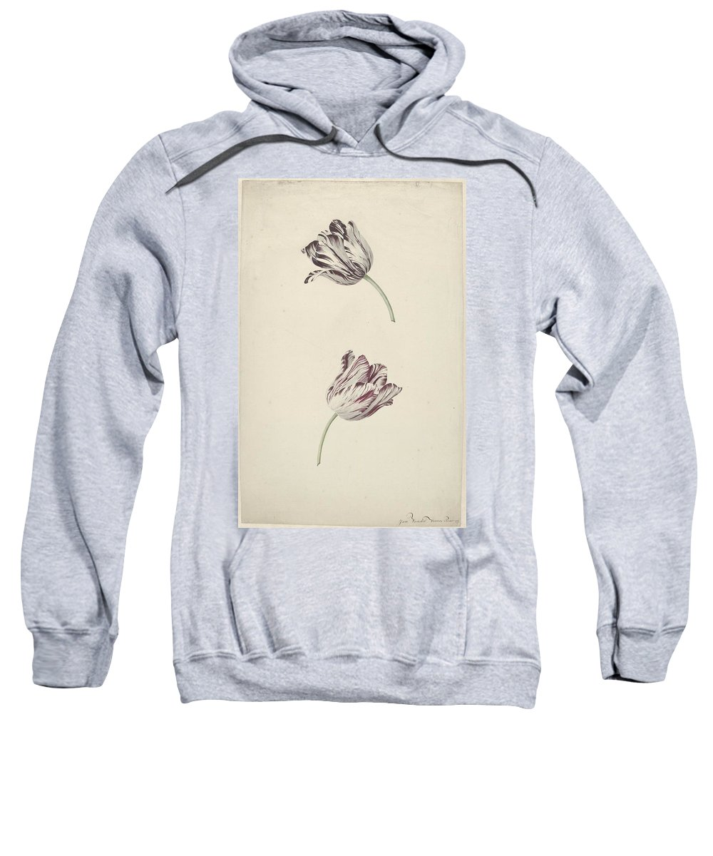 Two Red-and-white Tulips Sweatshirt featuring the painting Two Red White Tulips by MotionAge Designs
