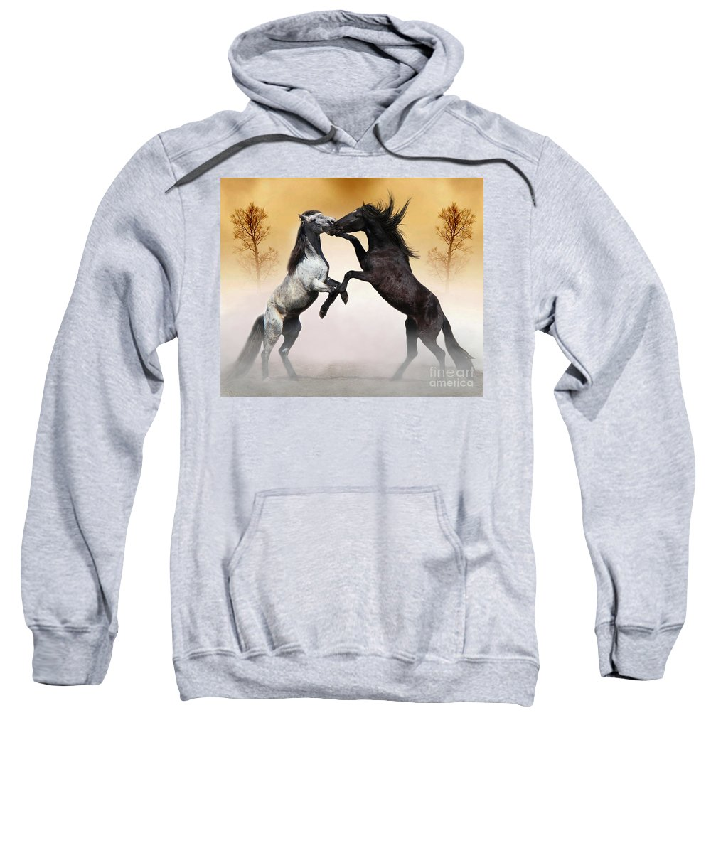 Animals Sweatshirt featuring the photograph Two To Tango by Davandra Cribbie