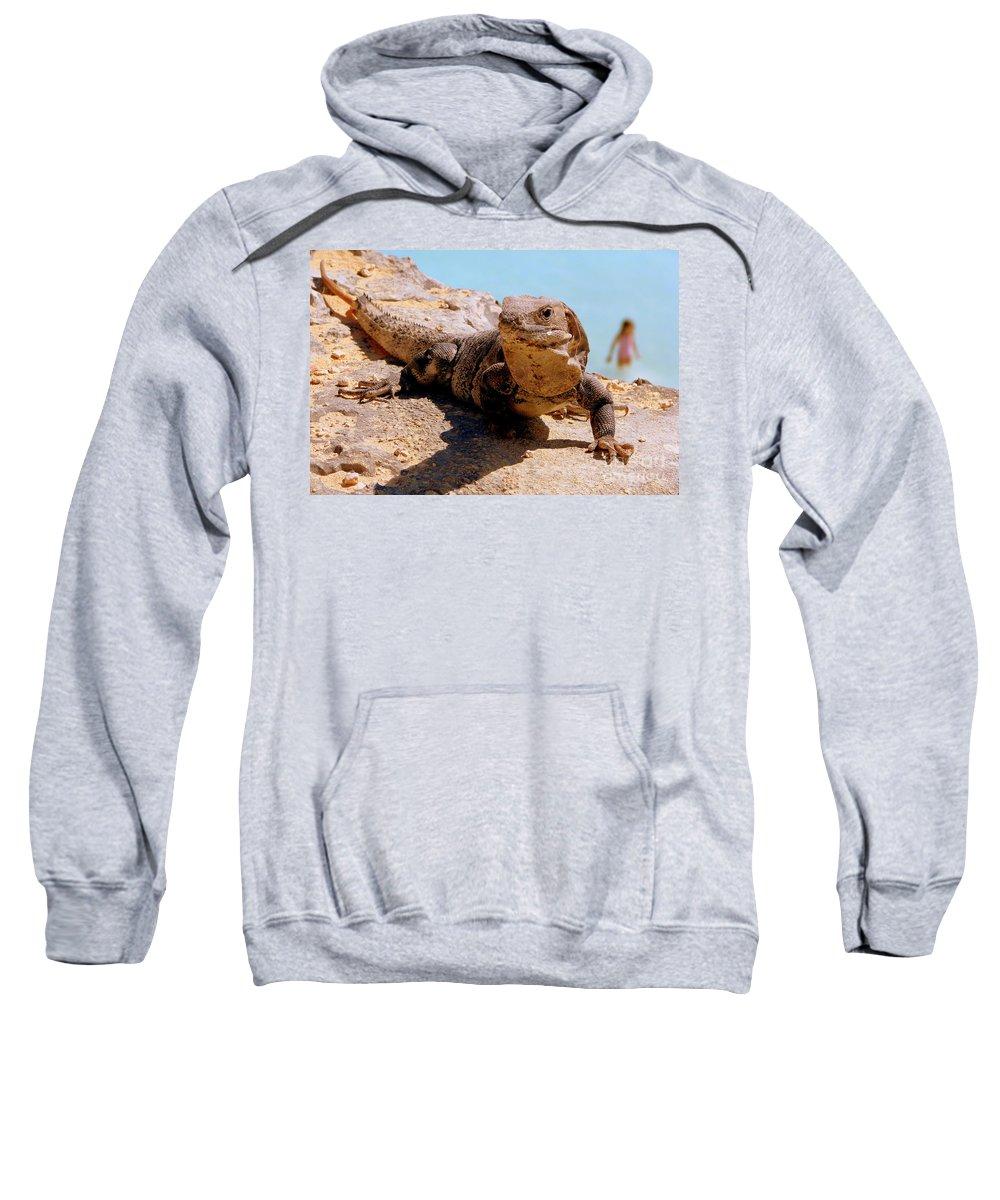 Iguana Sweatshirt featuring the photograph Two Worlds by Priscilla Richardson