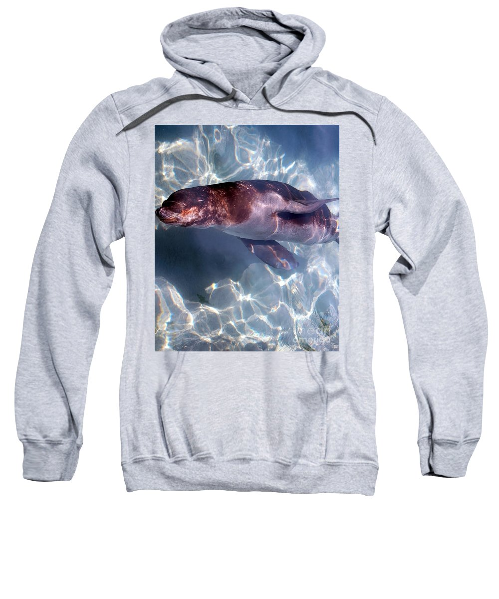 Sea Sweatshirt featuring the photograph Under The Water by Kathleen Struckle