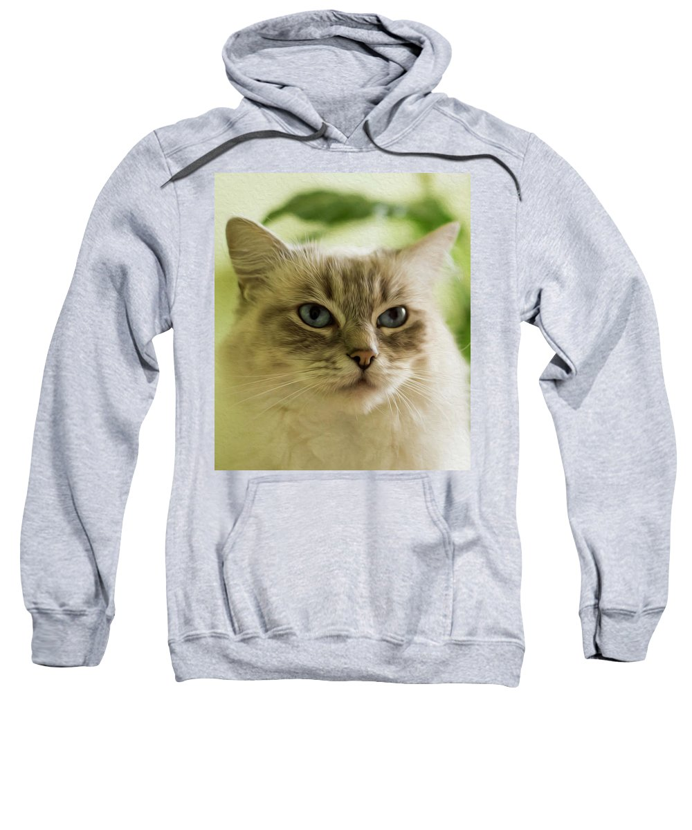 Cat Sweatshirt featuring the photograph Unimpressed by Cathryn Hardwick