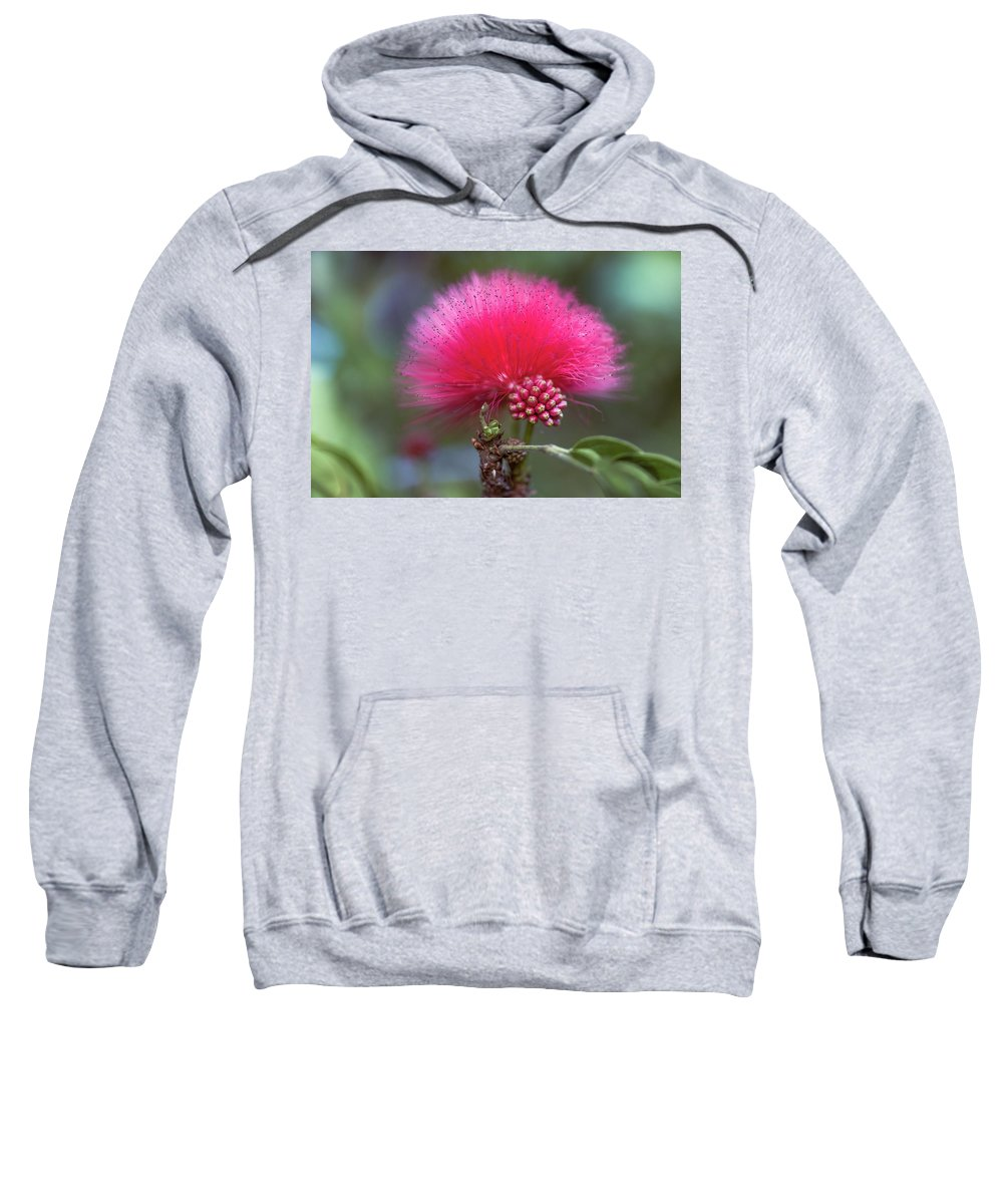 Flower Sweatshirt featuring the pyrography Universe by Hanna Tor