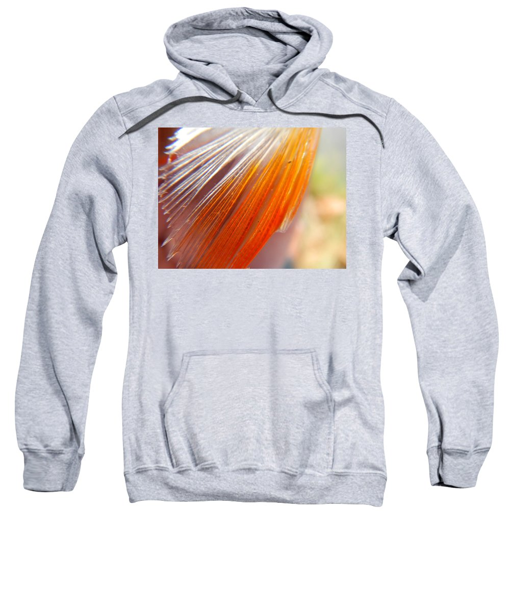 Abstract Sweatshirt featuring the photograph Untitled by Brayden Doyle